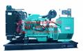 250KW康明斯柴油發電機組 2