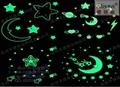 进口长效高亮荧光粉 夜光粉 绿色环保 4
