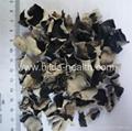 Diced White-back black fungus