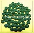 Supply spirulina products new crop