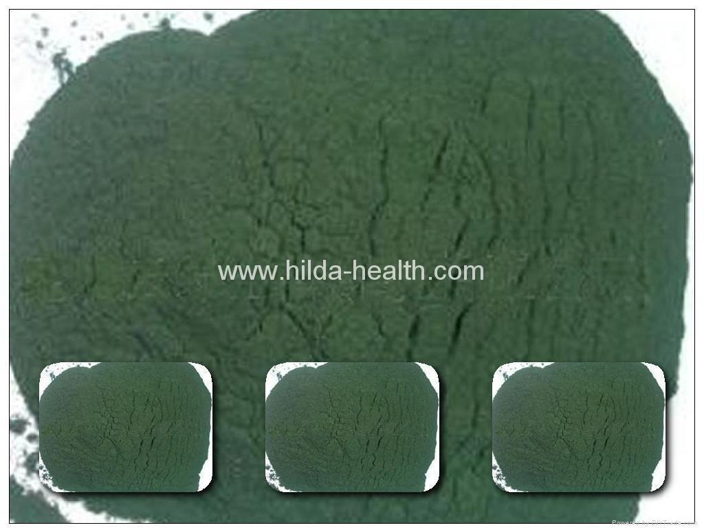 Chlorella (powder, 2