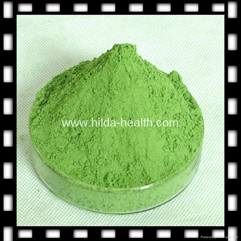 Organic barley grass powder 1