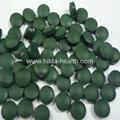 Organic Spirulina 2