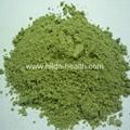 Organic Wheat Grass Powder 3