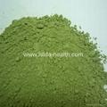 Organic Wheat Grass Powder 4
