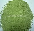 Organic Wheat Grass Powder 5