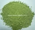 Organic alfalfa grass powder 2
