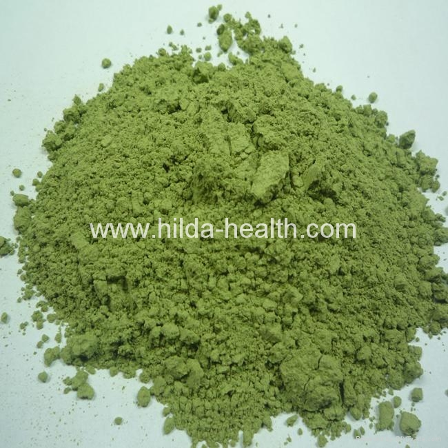 Organic buckwheat grass powder 2