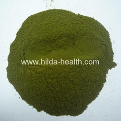 Organic barley juice green powder
