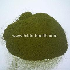 Organic wheatgrass juice green powder