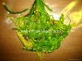 Chuka salad Hiyashi salad