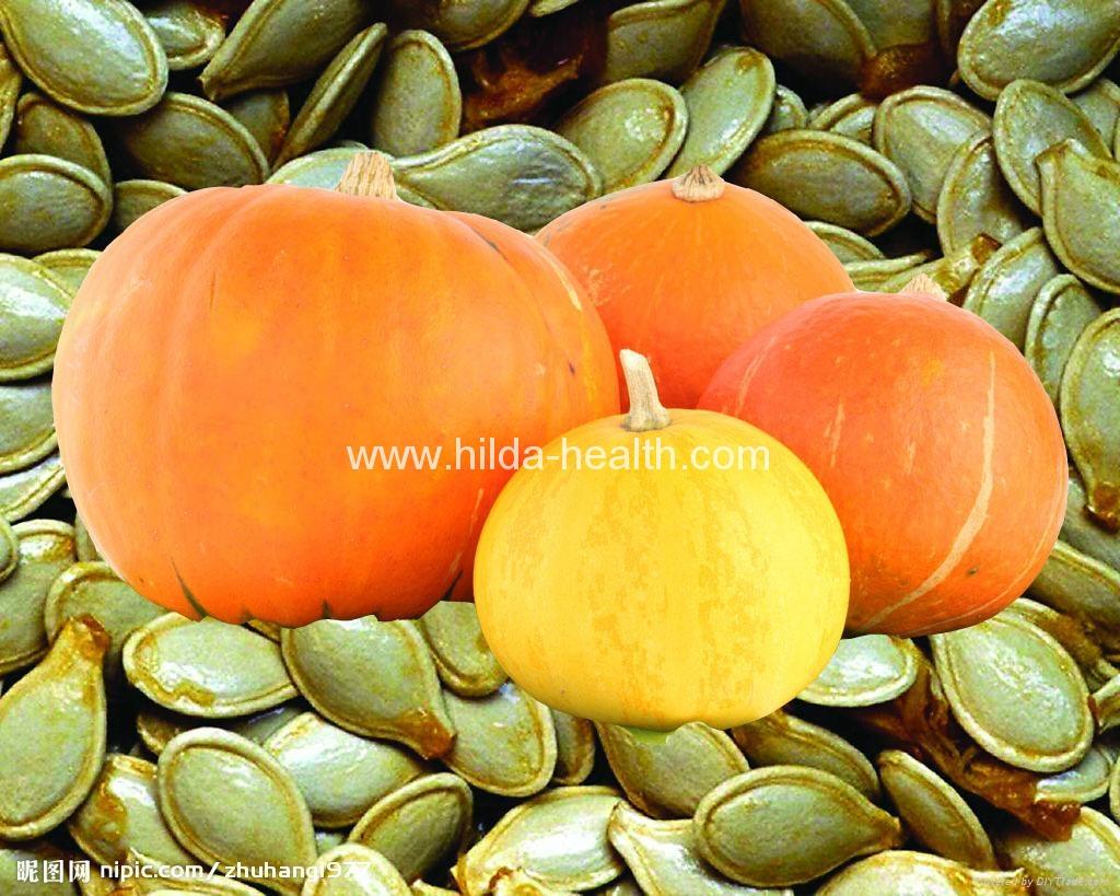 Organic pumpkin seed oil  1