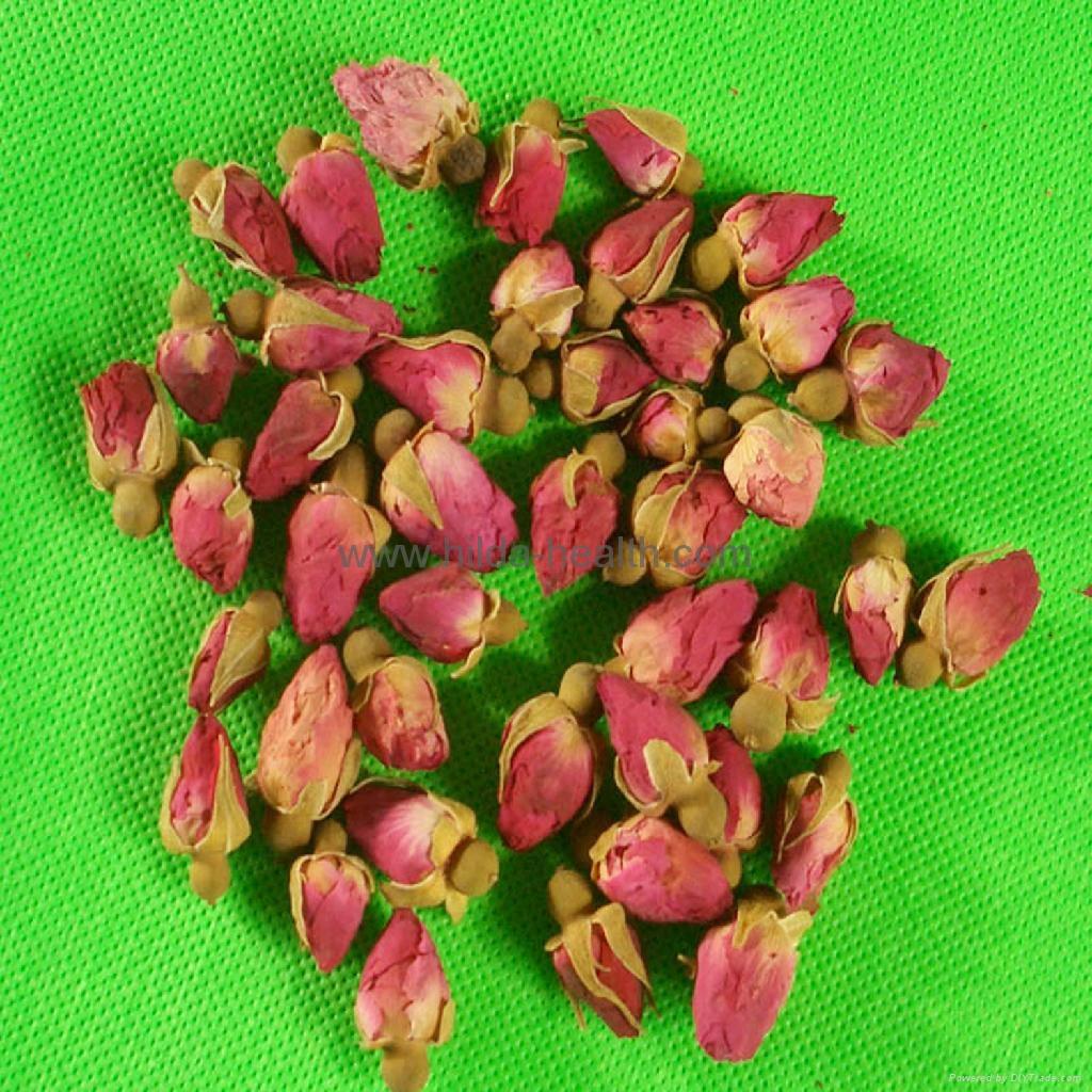 干玫瑰花蕾 2