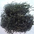 Machine dried cut kelp laminaria