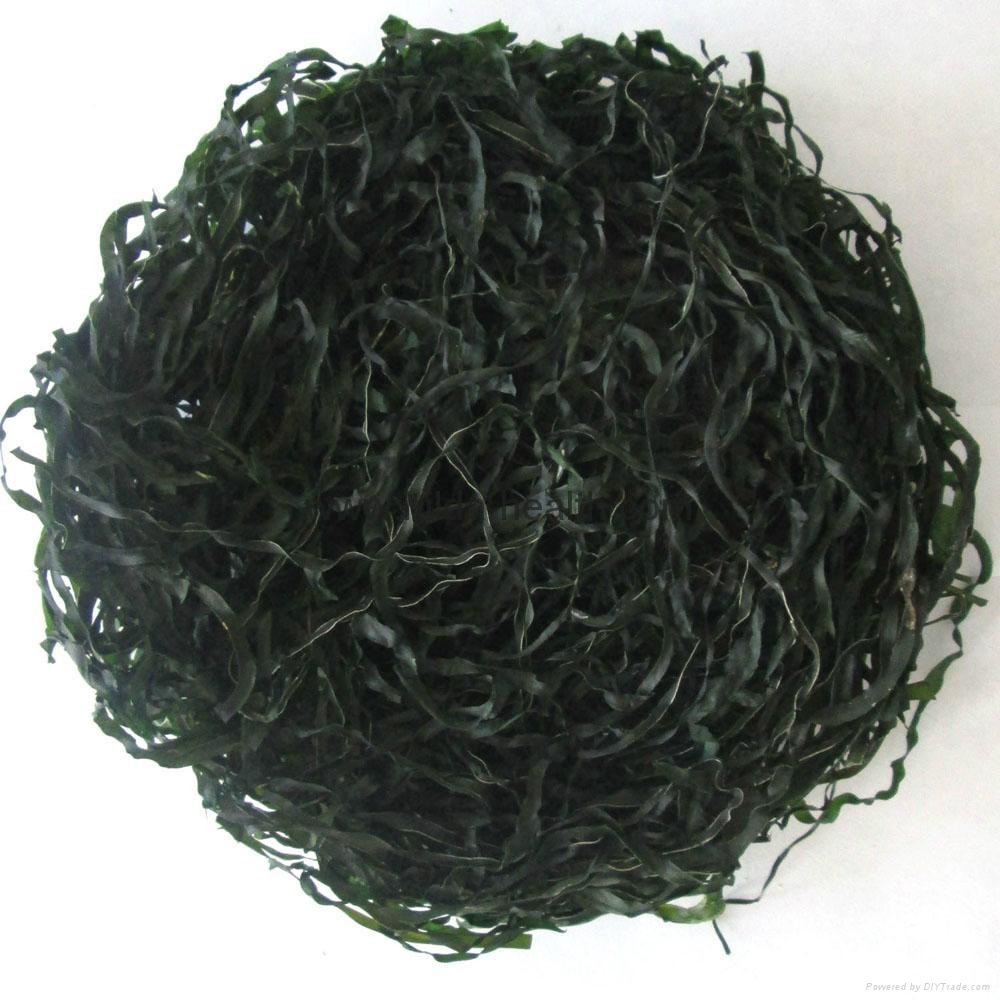 2020 High swelling Machine Dried cut kelp(laminaria,sea tangle,seaweed)