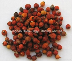 2020 crop dried wild rosehip fruits