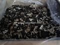 Dried white back black fungus  2