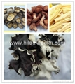 Dried white back black fungus