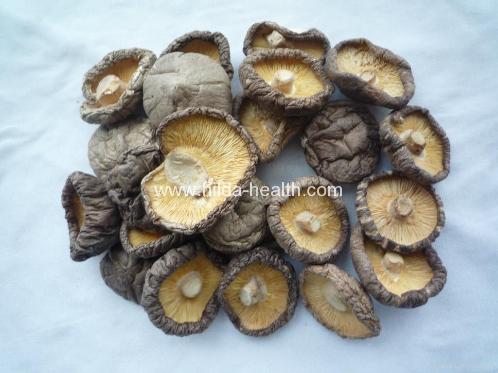 Dried shiitake mushroom  1