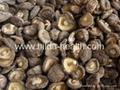 Dried shiitake mushroom  3