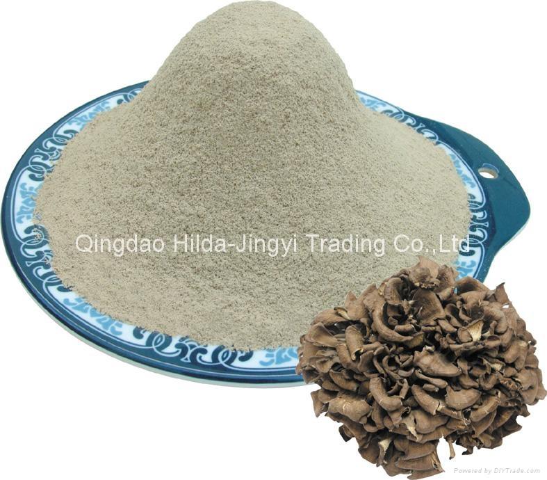 Maitakemushroom(Grifola frondosa) powder 1