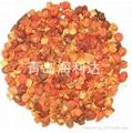 Rose canina fruit shell