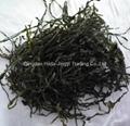 2019 Crop Machine dried sea kelp cut