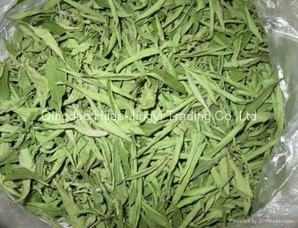 Stevia leaves cut  2