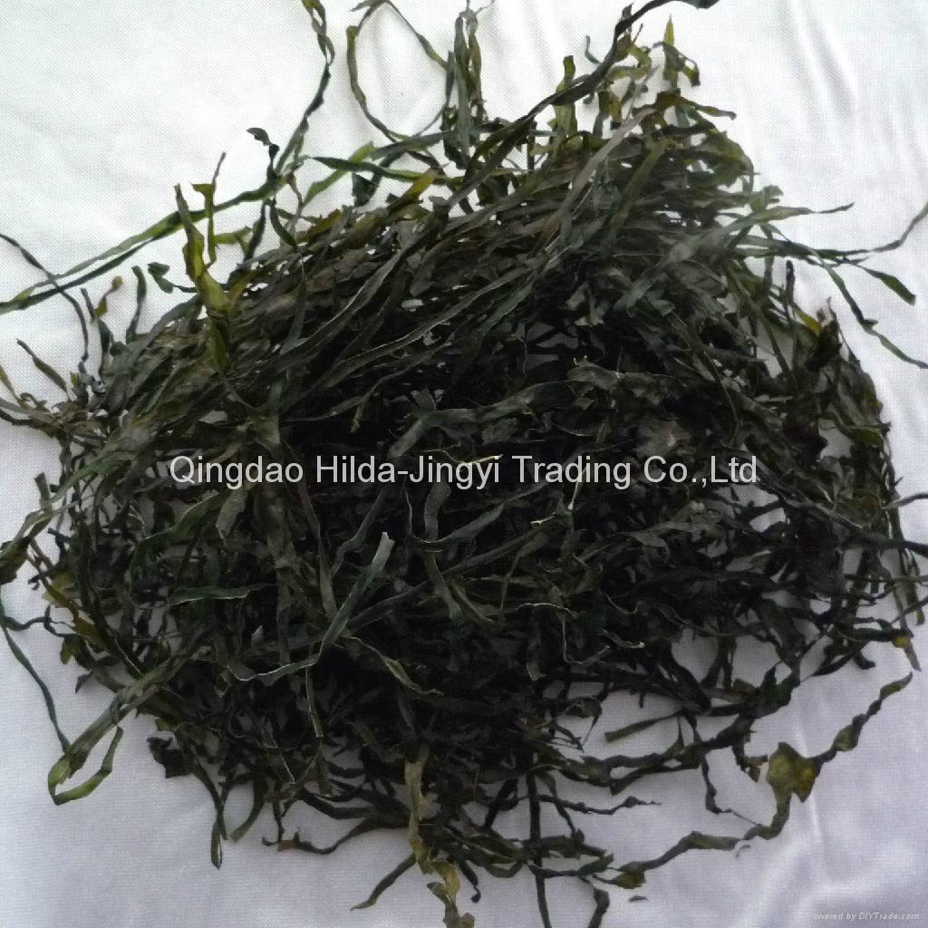 machine dried cut kelp swelling 15-18