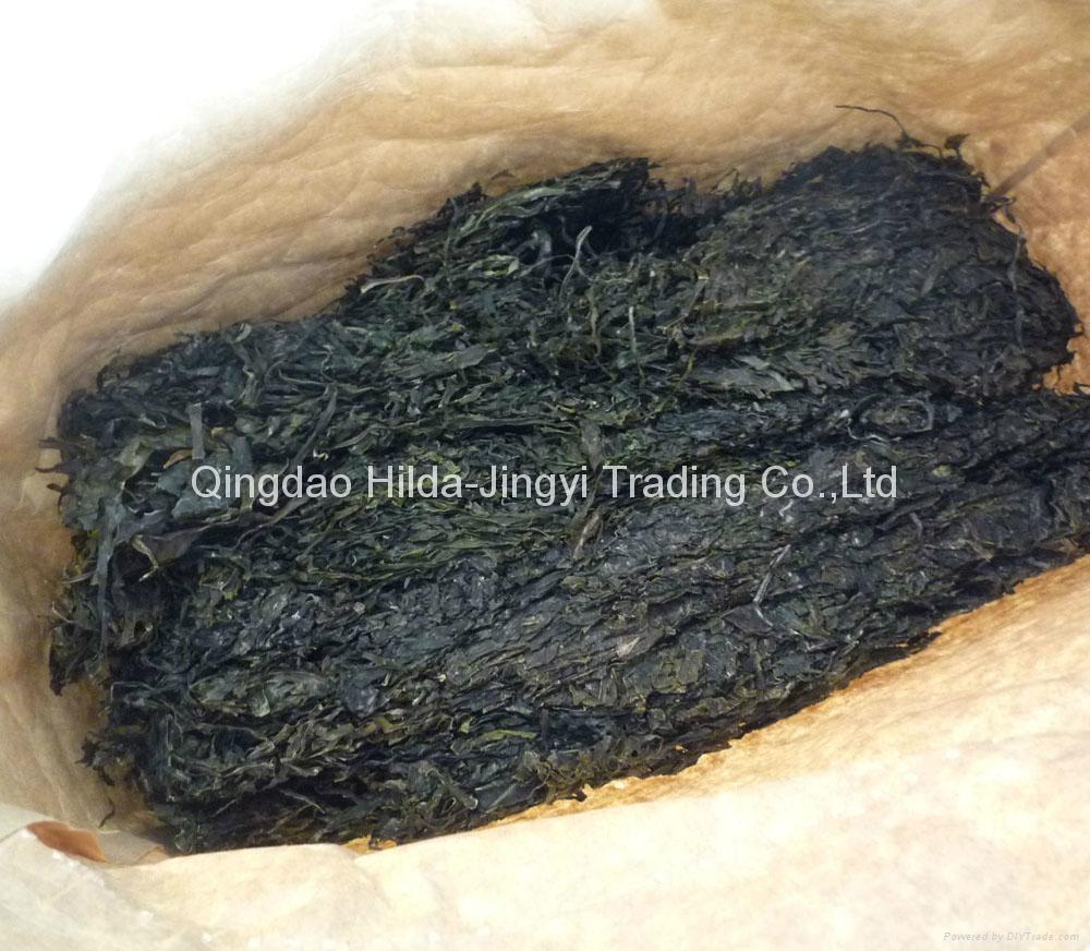 10kjgs Package of machine dried cut kelp swelling 15-18