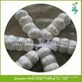 2015 Chinese Garlic 6