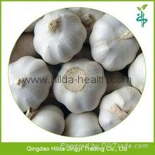 2015 Chinese Garlic