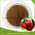 Hawthorn Extract Hawthorn Berry Extract