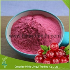100% Natural Cranberry Extract