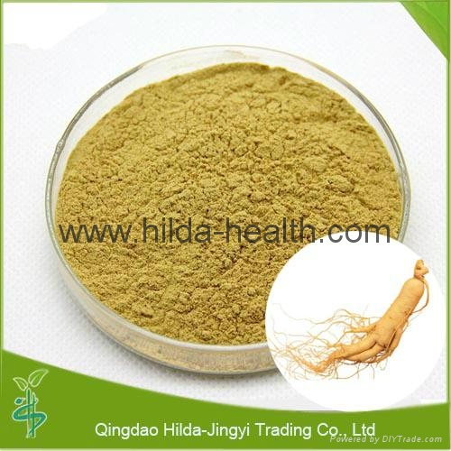 2015 Hot Sale Ginseng Extract 2