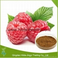 100% Natural Red Raspberry Extract