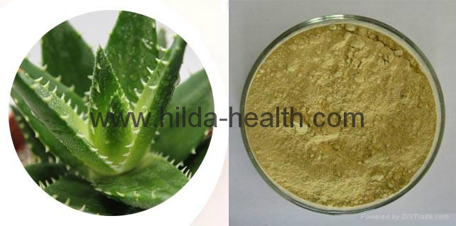 High Quality Aloes Extract 3