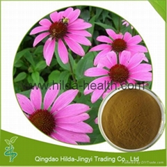 2015 Hot Selling Echinacea Extract