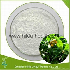 High Quality Loquat Leaf Extract Ursolic Acid