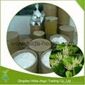 High Quality Resveratrol Polygonum Cuspidatum Extract