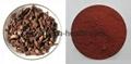 Danshen Root Extract Salvia Miltiorrhiza Extract