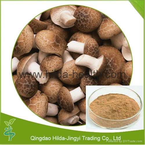 High Quality Shiitake Extract (Lentinus Edodes)