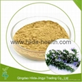Hot Selling Rosemary Extract