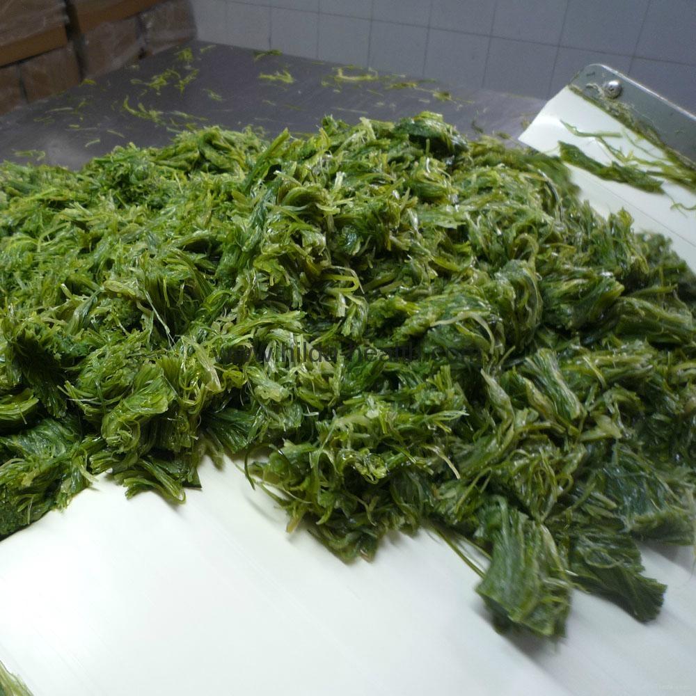 how to prepare frozen seaweed salad