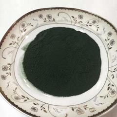 Europe standard high quality spirulina 120mesh