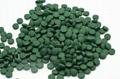 2020 Certified Organic Spirulina tablet