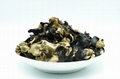 Dried white back black fungus diced
