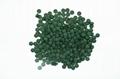 Spirulina Tables Food Grade Spirulina