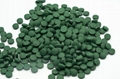 Supply With Best Price Production Of Spirulina Organic Spirulina Tablets 2