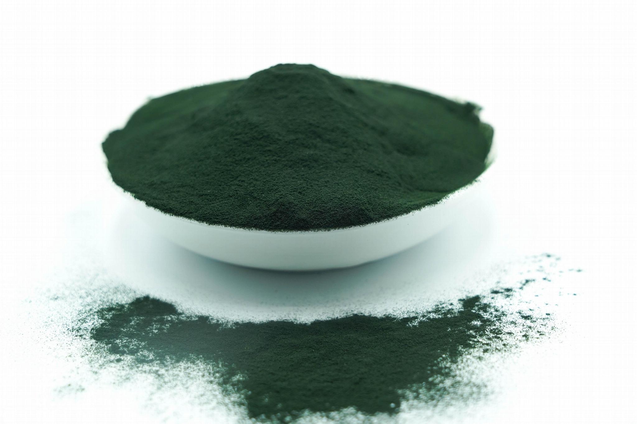 Price Of Spirulina Per Ton Spirulina Powder Spirulina Extract 1
